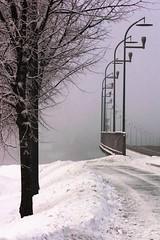 streetlight symmetry (EllaH52) Tags: winter snow tree trees bridge pavement streetlights lampposts symmetry