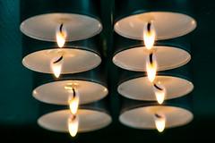 "Macro Mondays ""Flame"" (jola.etemadi) Tags: macro mondays flame"