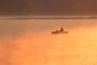 Fishing in the Golden Mist