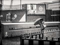 the.downpour.part.VIII (grizzleur) Tags: olymplus omd olympusomdem5mkii omdstreetphotography bw mono monochrome blackandwhite street photography candid olympus1250mm13563 olympusm1250mmf3563 olympusmzuiko1250f3563 rain raining downpour heavy pour pouring wet umbrella wind movement dynamic urban