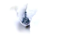 frosty.bubble (_andrea-) Tags: ice cold bubble sternenberg snow frosty sonya7m2 carlzeiss planart1450 objektiv mount macro