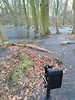 Today out with the little KW Patent Etui. Had just two sheet films left as I stuck on this scene. (salparadise666) Tags: nilsvolkmer nature landscape color digital hannover region niedersachsen germany northplains swamp season wood forest