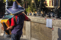 Roma n°32 - pubblico non pagante ... (Roberto Defilippi) Tags: 2018 142018 nikond7100 rodeos robertodefilippi roma rome street musicista pontesisto