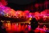 九族櫻花祭 (Lin Jen Chieh) Tags: 南投 台灣 九族文化村 櫻花祭 櫻花 樹