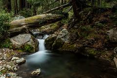 Limekiln Trail (nhblevins) Tags: redwoods brook falls california forest rocks
