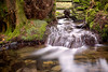 7th March 2018 (Rob Sutherland) Tags: otley beck cumbria cumbrian lowick common wood woodland cut cutting gourge wall dry stone bars fence trees wooded stream burn water fall tumble clean clear winter england english britain british rural uk