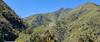20171214_101937 (jaglazier) Tags: 121417 2017 andes copyright2017jamesaferguson december deciduoustrees ecuador pichincha quito trees cloudforest forests landscapes mountains distritometropolitanodequito
