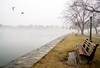 Misty View (JMS2) Tags: fog mist harbor bench scenic landscape park seawall water longislandsound