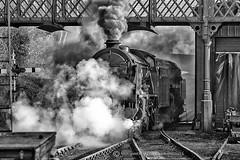 GETTING UNDERWAY (mark_rutley) Tags: engines hampshire locomotive midhantsrailway railway steamgala trains watercressline 925srschoolsclass'cheltenham'