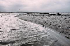 S (MobilShots) Tags: blende1net patrickgorden beach fotografhamburg fuji fujifilm laboe ostsee outdoor sand sea strand urban water xt1 seascape landscape man nature