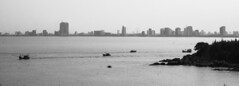 Da Nang Panorama (pierre blct) Tags: travel traveling sea ocean wave voyage vietnam asia blackandwhite monochrome landscape landscaping