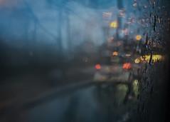 The Morning Commute (Katrina Wright) Tags: img0997 rain bus transit commute damp wet january morning bluehour bokeh condensation window traffic road