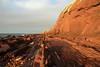 Along the Cliffs (Darren Schiller) Tags: hallettcove cliffs rocks ocean shore adelaide seascape seaside gulf sunset australia southaustralia landscape orange