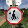 You have been warned! (rjmiller1807) Tags: penguin penguins penguincolony 2017 iphone iphonography iphonese bettysbay overberg stonypoint sign warning birds heart love funny westerncape southafrica africa