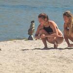 Feeding the ducks II thumbnail
