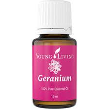 15 Geranium Essential Oil Benefits for Healthy Skin and Much More (theoilyguru.org) Tags: aromatherapy essential oils geranium hair healthy hormones mood natural pure safe skin