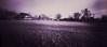 Into the red (Rosenthal Photography) Tags: diafilm rodinal12520°c18min ff120 color landschaft lochkamera januar natur 20180103 asa100 familie pinhole mittelformat winter garten fujiprovia100f 6x12 treu e6 analog zeroimage612b landscape nature january mood zero image 612b 40mm f158 fuji provia 100f rodinal 125 epson v800