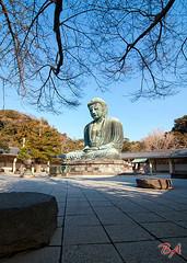 Daibutsu (Benisius Anu) Tags: daibutsu kotokuin japan kamakura buddha statue kanagawa