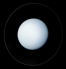 Uranus - January 22 1986 (Kevin M. Gill) Tags: uranus rings ringsofuranus voyager voyagerii voyager2 planet planetary science astronomy space