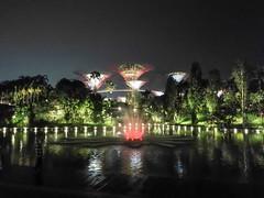 sin17-gardens-by-the-bay-2017-11-10-STF-L09-38-72dpi (datenhamster.org) Tags: singapore singapur 2017 holiday travel gardens bay night