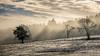 Rayons (Nu Mero) Tags: hiver soleil paysage brouillard neige valléedevillé nature brume neuveéglise grandest france fr