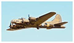 B-17 FLYING FORTRESS SALLY B (Ciaranchef's photography.) Tags: sallyb b17 bomber ww2aircraft ww2 airshow airplanes airdisplay dunsfold flyingfortress flyingdisplay nikonaviation nikond7000 tamron150600