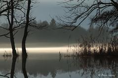 Comme 2 frères (Pierrotg2g) Tags: nature paysage landscape lac lake eau water arbres trees reflets reflection nikon d90 tamron 70200