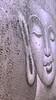 2018-01-02 13.19.48 (mdsmedia9) Tags: buddah obscured warburton