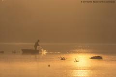 Morning's Catch (Karthik N Rao) Tags: bangalore bengaluru knr2018 kanara kanaraphotos karthiknrao nature sunrise goldenhour silhouette