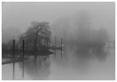 Fog –Süderelbe (fotoerdmann) Tags: landschaften deutschland germany fog nebel elbe süderelbe hamburg fotoerdmann