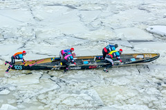Défi canots à glace 2018 (Yves Kéroack) Tags: stlawrenceriver winter fleuvestlaurent ice hiver déficanotsàglace2018 neige montréal outdoor glace snow vieuxport