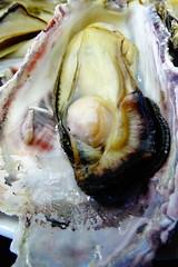 DSC00035 (muzina_shanghai) Tags: 牡蠣 蒸し牡蠣 oyster