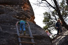 Climbing Up The First Ladder On The Cave Spring Trail (Joe Shlabotnik) Tags: november2017 nationalpark proudparents utah violet sue 2017 canyonlands everett ladder canyonlandsnationalpark afsdxvrzoomnikkor18105mmf3556ged
