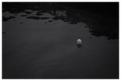 lonliness (RadarO´Reilly) Tags: hafen harbour wasser water ballon balloon hamburg
