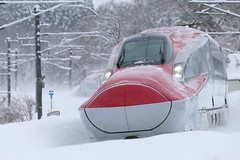 Go winter travel (Teruhide Tomori) Tags: 秋田県 秋田市 奥羽本線 日本 東北 秋田新幹線 こまち e6系 高速鉄道 ミニ新幹線 電車 列車 鉄道 railway railroad train japon japan tohoku akita superexpress bullettrain komachi e6series akitashinkansen winter snow 雪 red snowstorm blizzard 暴風雪 雪嵐 新幹線 shinkansen
