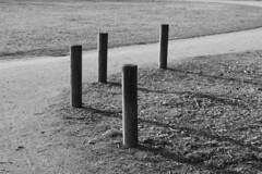 Swing it (Lorenzo BC-1) Tags: paletti poles sentiero track monocromo monochrome curva curve parco park strada path