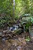IMG_1677 (Aelred85) Tags: canon600d sigma1750mmf28exdcoshsm jungle burma myanmar shanstate mrbike hsipaw