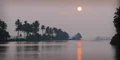 Backwaters sunset P1250910 (Phil @ Delfryn Design) Tags: india2018 kerala