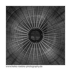 center (H. Roebke (offline for a while)) Tags: canon1635mmf28lisiii blackwhite canon5dmkiv bw roof amazonien 2017 hannover architecture dach zoo architektur lightroom lowkey