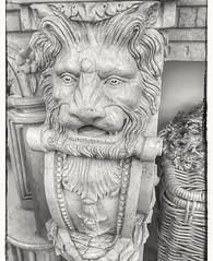 🎼Listen to the Lion🎶#lion #leeuw #lionhead #details #blackandwhite #blacknwhite #bnw #bw #bws #noir #monochrome #lovephotography #photography #photographer #fotograaf #fotografie #inside #interieur #interior #interiordesign #interieurd (Chantal vander Reijden) Tags: blackandwhite leeuw noir interieurdesign fotografie monochrome blacknwhite lovephotography lionhead photography bws interiordesign inside bnw details lion interieur interior photographer fotograaf bw