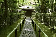 高桐院 Kotoin Temple (ELCAN KE-7A) Tags: 日本 japan 京都 kyoto 大徳寺 daitokuji 高桐院 kotoin temple ペンタックス pentax k3ⅱ 2017 新緑 fresh greenery