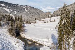 Flachauwinkl - Austria (Henk Verheyen) Tags: a austria flachau oostenrijk wintersport cold landscape landschap sneeuw snow white gemeindeflachau salzburg at flachauwinkl tree boom water river rivier beek