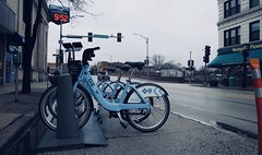 Divvy (Crawford Brian) Tags: divvy bikeshare bike transportation oakpark street rain bicycle illinois urban midwest