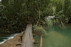 A Walk In The Lacandon Rainforest (elhawk) Tags: lacandonforest chiapas mexico bridge