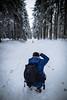 HM2A7589 (ax.stoll) Tags: feldberg frankfurt taunus mountain forest snow winter winterwonderland outdoor nature dog hovawart trees street wanderlust travel