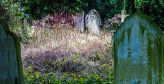 Day 20 - Alresford-3737.jpg (PhotoLouis) Tags: alresford hampshire buildings places graves stjohnsalresford uk europe