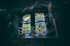 Signs of Quality II (Normann Photography) Tags: brillet france graves lesaireaux tcs tunsbergcognacselskab cognac fat kjeller lagring spindelvev vindu gravessaintamant poitoucharentes fr