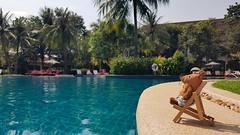 Maus Chilling at Pool (SkylineGTR) Tags: die maus hotel siem reap pool