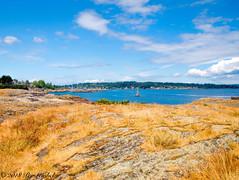 Cattle Point (Per@vicbcca) Tags: olympus ep2 cattlepoint victoria britishcolumbia canada vancouverisland landscape seascape urbanstarpark uplandspark