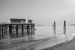 Dock on the Bay_B&W (Dan Baldini) Tags: sanfrancisco sf sfbayarea bay water ocean dock blackwhite bw beach sand saltwater alcatraz california northerncalifornia